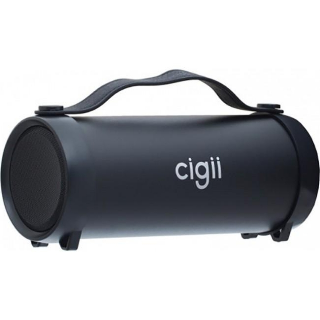 CIGII S33D SPEAKER